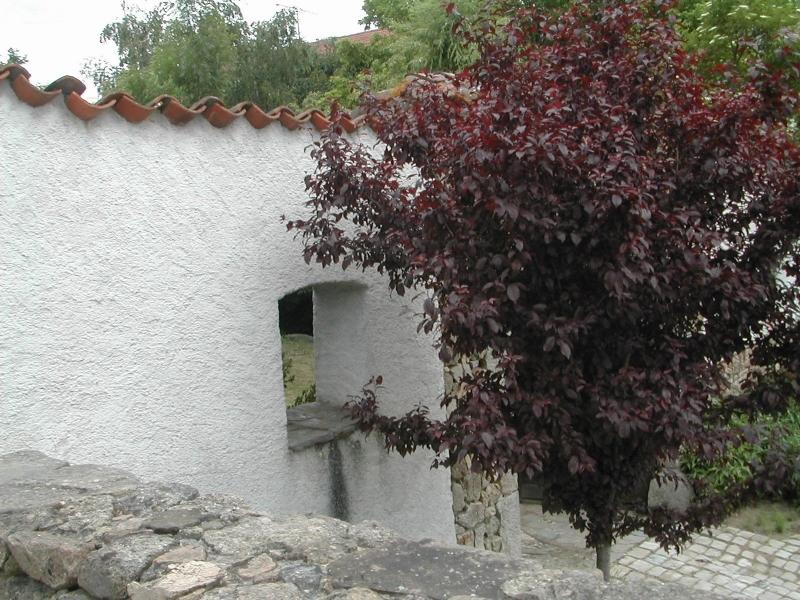 Le mur séparant le jardin et la cour intérieure