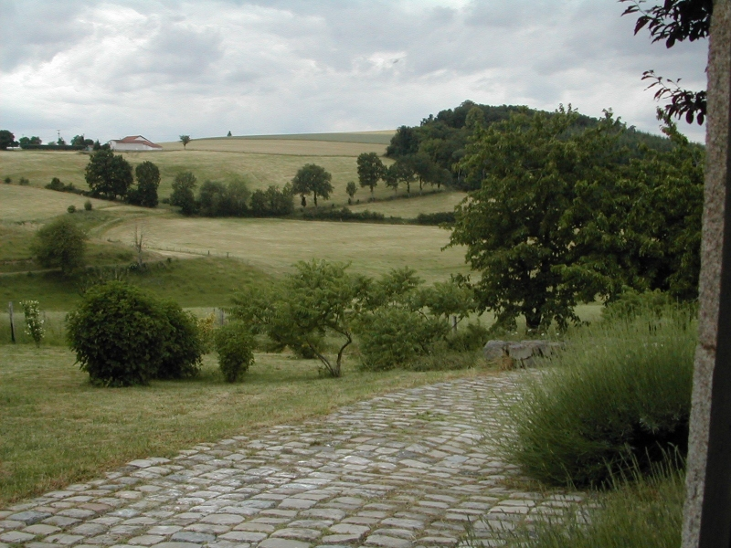 Vue sur la campagne vallonnée depuis la route