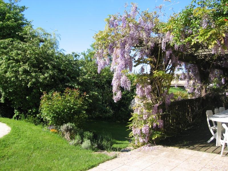 Une terrasse en bois avec une glycine vous abritera du soleil pour prendre vos repas ou petits déjeuners