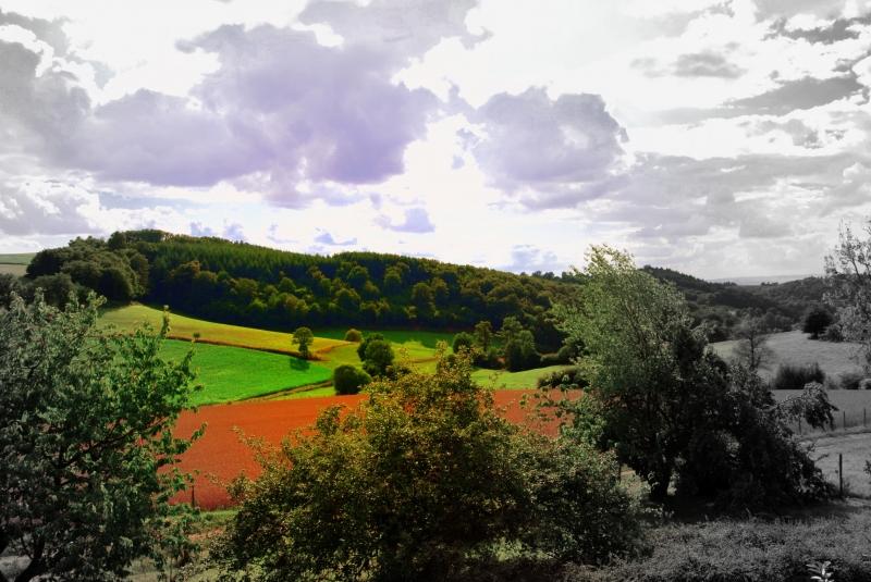 Paysage environnant (photo retouchée)