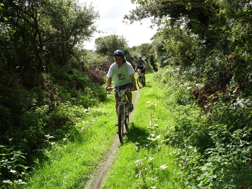 Circuit VTT et ballades en vélo dans la campagne environnante