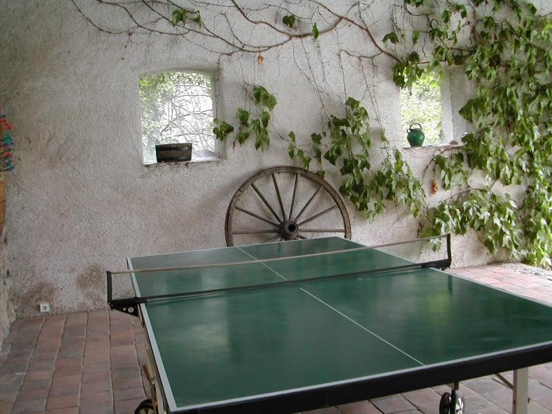 Une table de ping pong avec raquettes et balles est à votre disposition