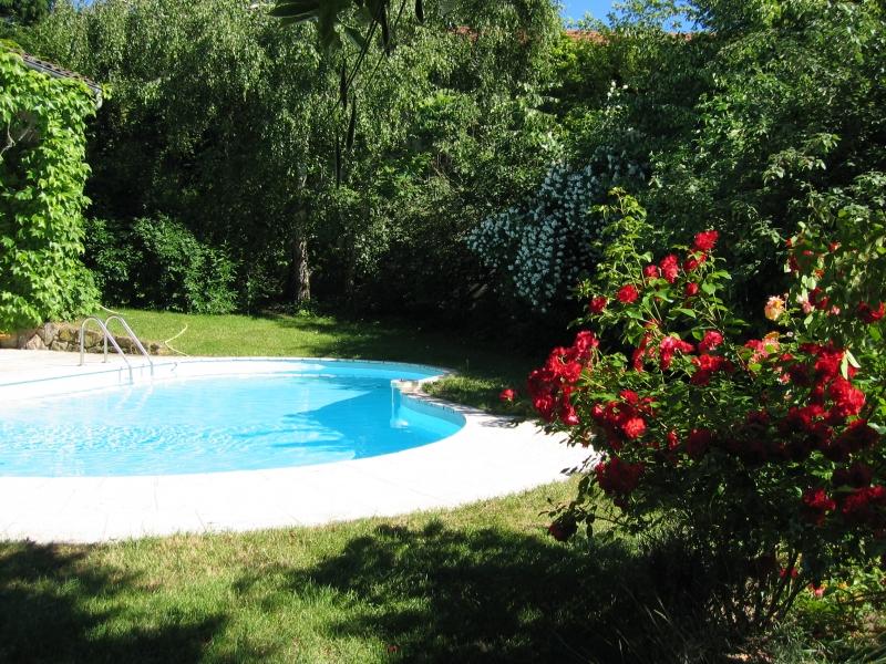 La piscine l'été avec les massifs de fleur