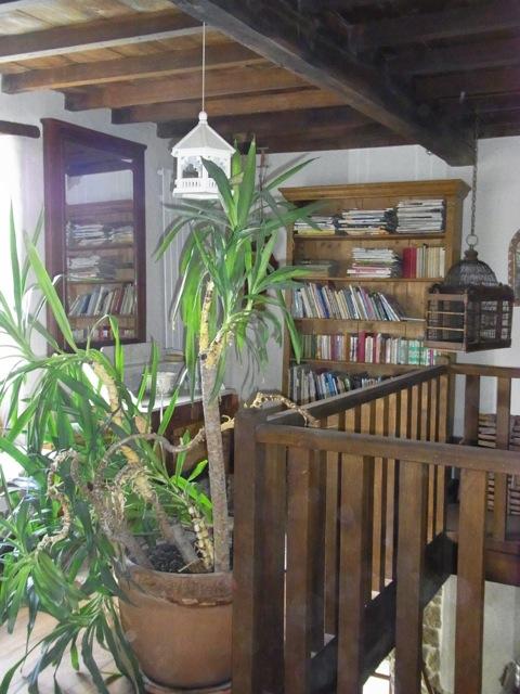 Un bonzai stabilisé agrémente la bibliothèque